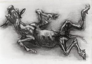 Vitello, 1990, carbone su carta, 32x50 cm